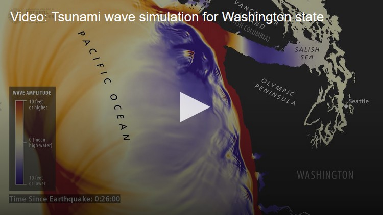 king5 News Washington Tsunami Simulation