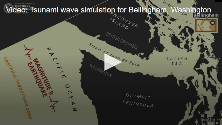 king5 News Washington Tsunami Simulation Bellingham Wa